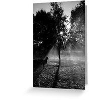 Smoky shadows Greeting Card