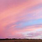 Sky Beauty by sarnia2