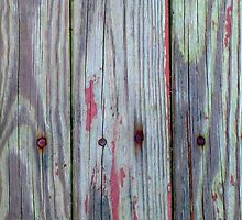 Old Barn Wood With Rusty Nails by rpwalriven