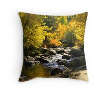 """Lazy River"" Throw Pillow"