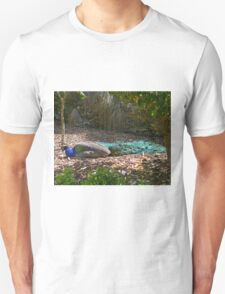 Taking the sun Unisex T-Shirt