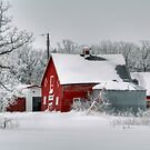 Red in White!!! by Larry Trupp