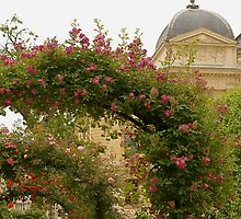 Jardin de Plantes by Virginia Kelser Jones