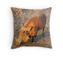 Warthog, Kruger National Park, South Africa Throw Pillow