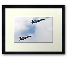 Pair of Eagles, Air Force style Framed Print