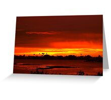 Singeing sunset Greeting Card