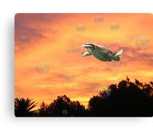 Merging of sky and earth Canvas Print