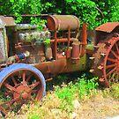 Rusty Old Farm Tractor by Debbie Robbins