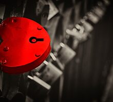 Locked in Love by focusonphotos