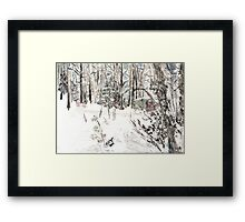 Toolshed at Woods' Edge, in Snow Framed Print