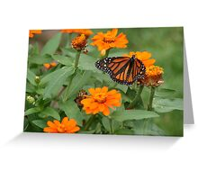 A Monarch Making the Rounds Greeting Card