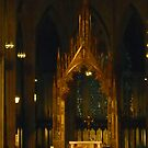 Inside St Patrick's Cathedral by Michael Degenhardt