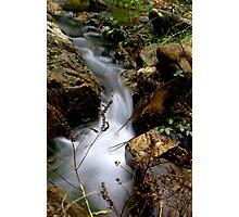 Stream - Morialta Conservation Park, South Australia Photographic Print