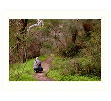 Another photographer on location - Morialta Conservation Park, South Australia Art Print