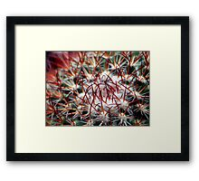 ©NS In Thorns TTIIA Framed Print