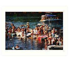 American River Wild Life Art Print