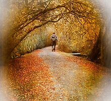 Autumn Walk by Chris Armytage™