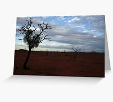 Once upon a desert.... Greeting Card