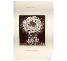 Floral Designs Series I a hand book for cut flower workers and florists John Horace McFarland 1888 0027 Standing Wreath Poster