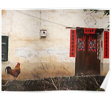 Resting rooster 2 - Yangshuo - China Poster