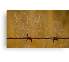 Web on the wire Canvas Print