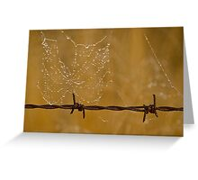 Web on the wire Greeting Card