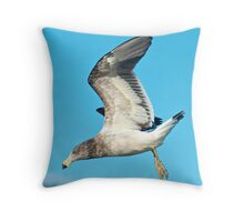Young Pacific Gull Throw Pillow