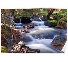 Main Creek Poster