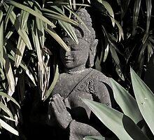 Buddha by Tim Freedman