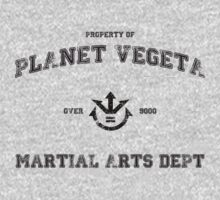 Planet Vegeta Martial Arts Department (Dragonball Z) by CloakAndDaggers