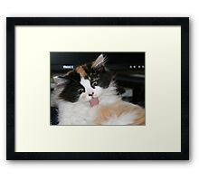 This cleaning myself is hard work Framed Print