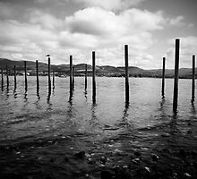 Poles at Howden, in monochrome by Elana Bailey