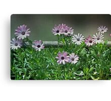 The Earth Laughs in Flowers... Canvas Print