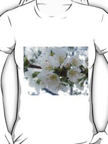 Cherry blossoms T-Shirt