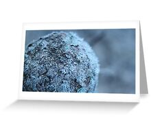 Very old frozen fencepost. Greeting Card