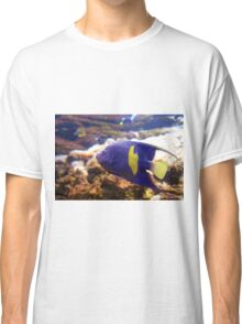 Purple yellowbar angelfish - Pomacanthus maculosus  Classic T-Shirt