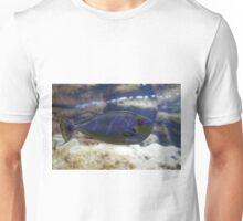 Naso vlamingii fish Unisex T-Shirt
