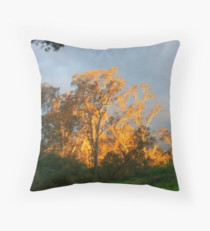 a split second before sunset Throw Pillow