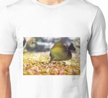 The yellow tang (Zebrasoma flavescens) Unisex T-Shirt