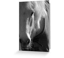 White Horse at Smith's Farm, Shorne , Kent Greeting Card