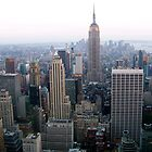The Empire State Building by hcorrigan
