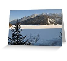 Winter Scene. Sylvenstein. Greeting Card