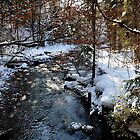Winter Brook by Daidalos