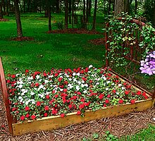 The Flower Bed by vigor