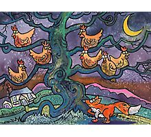 Out-Foxed!! Photographic Print