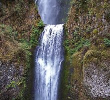 Multnomah Falls, Oregon by Nancy Richard