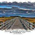 Silver Sands State Park - Bridge to Charles Is. by Tim Mannle