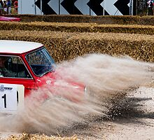 Mini Cooper S Rallying by CheesyGoat