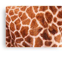 Baby Giraffe Design Canvas Print