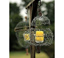 Wire Lanterns Photographic Print